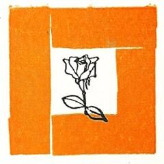 Blindar la Rosa